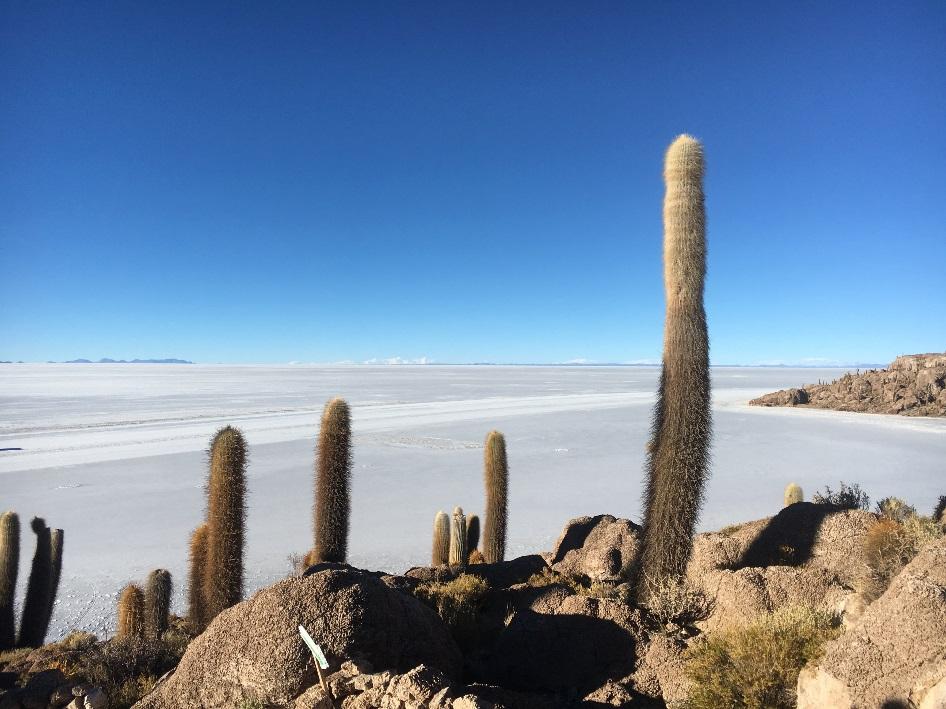 Landschaft Bolivien Wir sind Zahnärzte 2018
